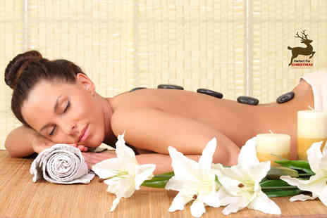 Earth Wellness Center - One hour hot stone massage - Save 57%
