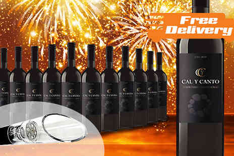 Karpe Deal SL - 12 Bottles of Award Winning Castillo Red Wine with Free Delivery - Save 77%