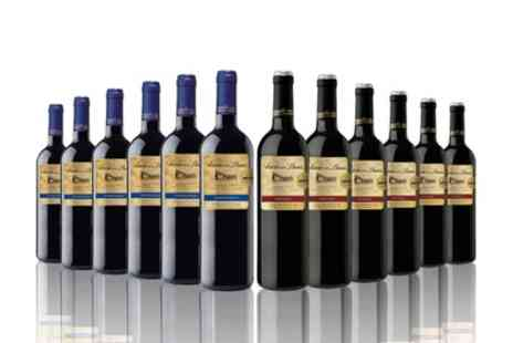 The Vineyard Club - 12 Bottle Case Mixed Variety Red Wines With Free Delivery - Save 65%