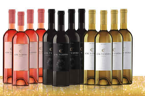 Easy Gifts - 12 bottles of award winning Cal Y Canto Spanish wine - Save 75%