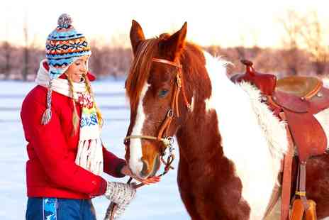 Pembrey Park Riding Centre - One Hour Winter Horse Riding Trek - Save 36%