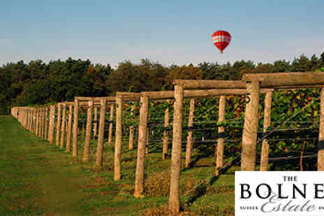 Bolney Wine Estate - Vineyard Tour, Wine Tasting and Lunch for Two - Save 0%