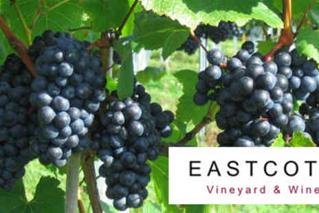 Eastcott Vineyard - Meet the Winemakers Tour for Two - Save 0%