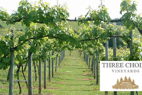 Three Choirs Vineyards - Vineyard Tour, Wine Tasting with Lunch for Two - Save 0%