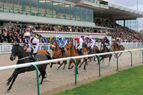 Wolverhampton Racecourse - Horse Racing Day for Two - Save 50%