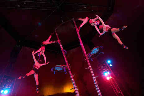 Tony Hopkins Entertainment - Front circle ticket to the Netherlands National Circus - Save 50%