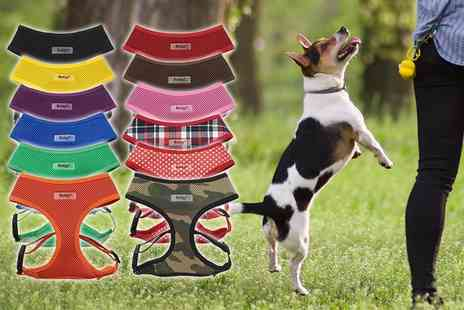 Jazooli - Mesh pet harness choose from 12 colours - Save 20%