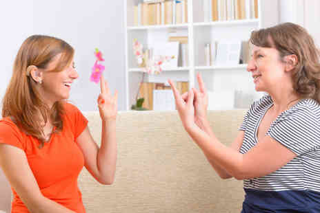 Of Course - Online Sign Language Course - Save 81%