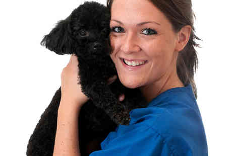 Holly and Hugo - Careers with Animals Online Course - Save 89%
