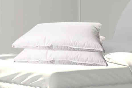 Gorgeous Selection - 2 Goose Feather & Down Pillows - Save 63%