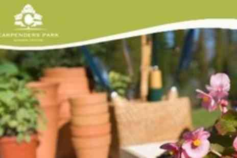 Carpenders Park Garden Centre - £20 for £40 Towards Themed Plants, Hardy Plants, Pots and Garden Furniture - Save 50%