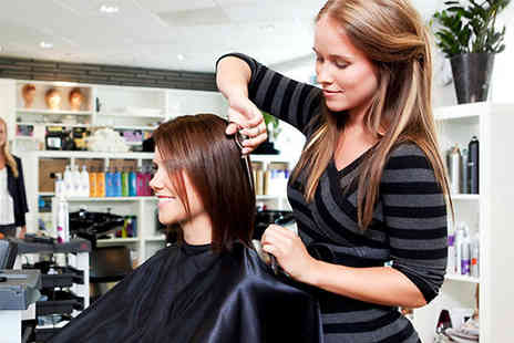 BlueMountain - Complete Hair Stylist And Salon Management Diploma - Save 91%