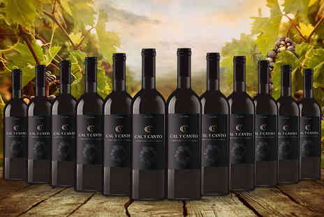 Easy Gifts - 12 bottle case of award winning Spanish red wine - Save 76%