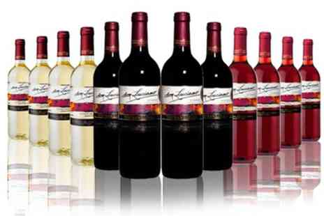 The Vineyard Club - 12 Bottles of Red, White, Rose or Mixed Wine  With Free Delivery - Save 65%