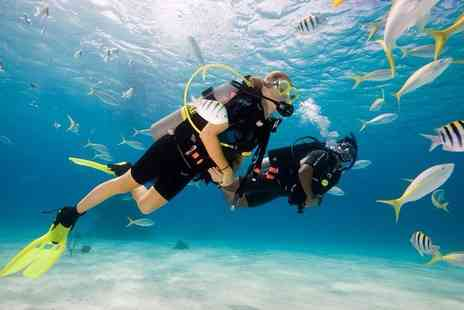 Scuba School - Try dive scuba introduction session - Save 51%