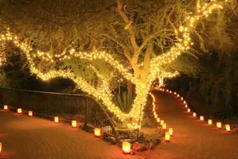 Groupon Goods Global GmbH - String of 50 or 100 LED Solar Powered Fairy Lights - Save 67%