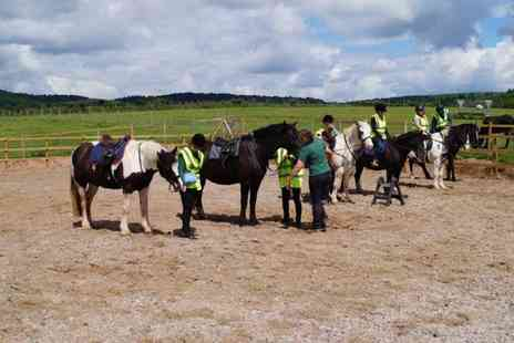 SevernwyeEquestrian - One Hour Pony Trekking for One or Two - Save 20%