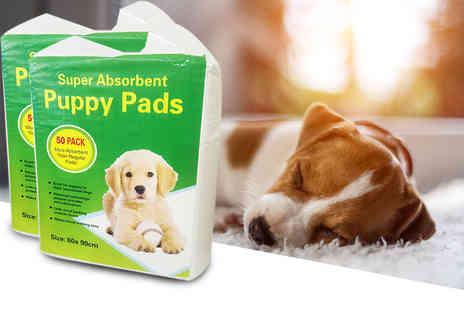 A2B Shopping - Pack of 100 puppy training pee pads and bone shaped bag dispenser with one roll of poo bags - Save 44%