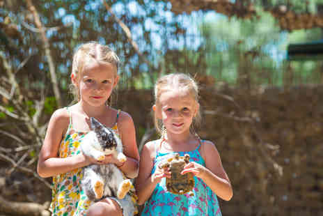 Viaduct Animal Sanctuary and Petting Zoo - Reptile or small animal experience for one or two - Save 80%