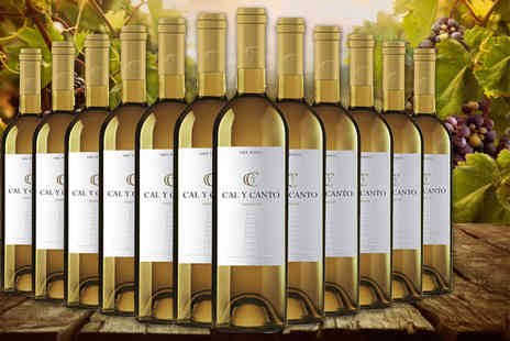Easy Gifts - 12 bottles of award winning Cal Y Canto Verdejo white wine - Save 76%