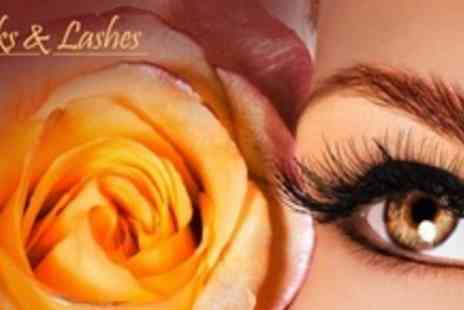 Looks and Lashes - 3D Eyelash Extensions With Eyebrow Wax and Tint - Save 75%