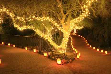 Groupon Goods Global GmbH - One, Two or Three Strings of 50, 100 or 200 LED Solar Powered Fairy Lights - Save 67%