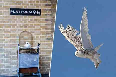 See Your City - Two hour walking tour of Harry Potter filming locations around London - Save 60%