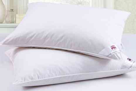 Groupon Goods Global GmbH - Dickens Goose Feather and Down Pillows - Save 78%