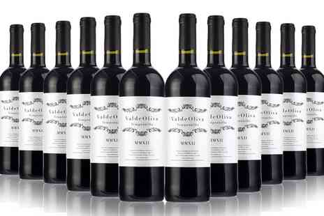 San Jamon - 12 Bottles of Spanish Tempranillo Red Wine With Free Delivery - Save 54%
