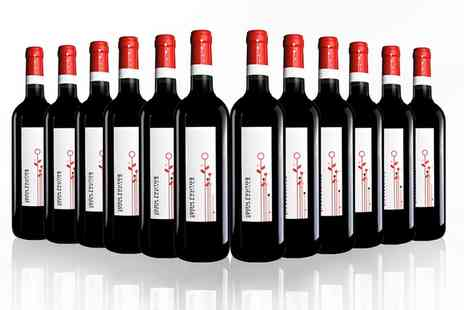 San Jamon - 12 Bottles of Spanish Red Wine Don Frutos Tinto Joven, Tierra de Castilla y Leon With Free Delivery - Save 44%