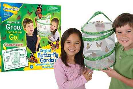 Toy Galaxy - Butterfly Garden Hatching Kit - Save 0%