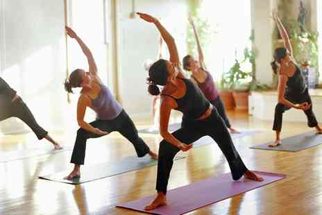 YourStyle Fitness - 14 Fitness Classes for One or Two - Save 90%