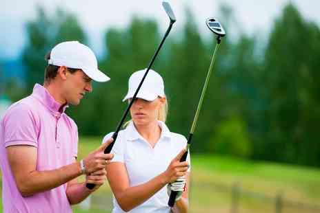 The Golf Swing Company - One or Two 45 or 90 Minute Golf Lessons with Video Analysis for One or Two - Save 65%