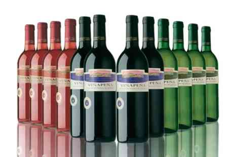 The Vineyard - 12 Bottles of Red, White, Rose or Mixed Wine With Free Delivery - Save 63%