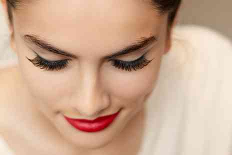 Trendimi - Contouring and Highlighting Online Course - Save 84%