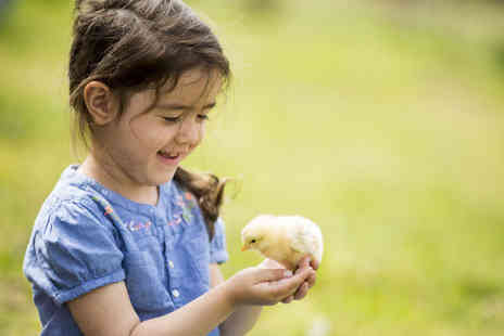 Greenacres Animal Park - Family ticket to Greenacres Animal Park - Save 53%