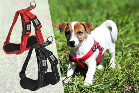 Dream Price Direct - Medium, large or extra large neoprene dog harness - Save 80%
