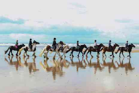 Murthwaite Green Trekking Centre - Two hour horse riding beach trek for two - Save 51%