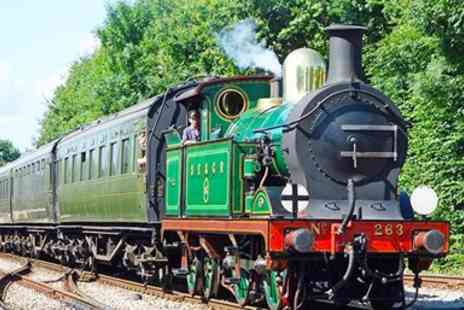 Bluebell Railway - Sussex Return Steam Train Trip - Save 44%