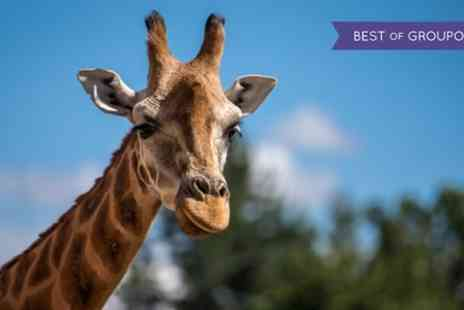 Superbreak - Overnight Stay for Up to Four at Days Hotel Chester North with Zoo Tickets - Save 0%