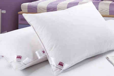 TLD Marketing - Two Luxury Dickens Duck Feather Pillows - Save 86%