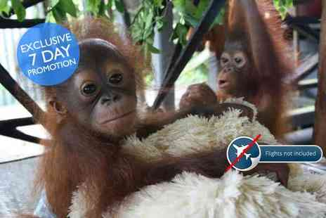 The Great Projects - 14 day all inclusive Borneo orangutan, tribe and rainforest experience - Save 38%