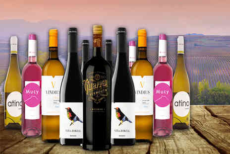 Harris Wine Merchant LLC - 12 bottle selection of Spanish wine and vermouth - Save 49%
