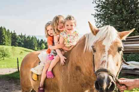The Freedom Centre CIC - 90 Minute Kids Pony Party for Eight - Save 68%