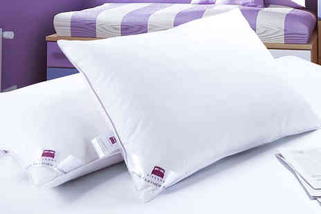 TLD Marketing - Set of four Dickens luxury duck feather pillows - Save 82%