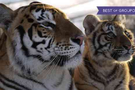 Lincolnshire Wildlife Park - Child, Adult or Family Entry to Lincolnshire Wildlife Park - Save 41%