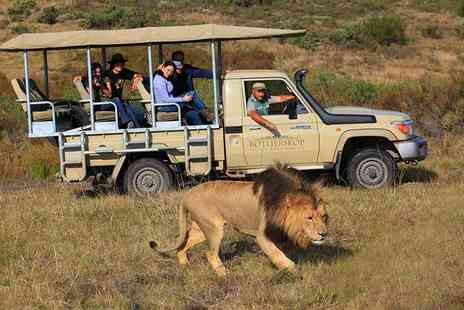 Botlierskop Private Game Reserve - Four night full board South African Safari and luxury stay - Save 63%