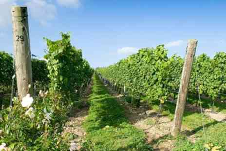 Cottonworth - Hampshire Vineyard Tour for 2 with Tasting & Lunch - Save 47%