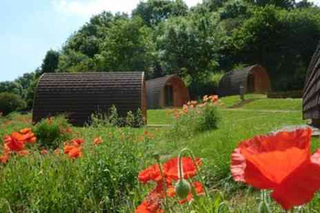 Whitehill Country Park - One to Three Night Camping for Up to Four with Option for Glamping Pod - Save 51%