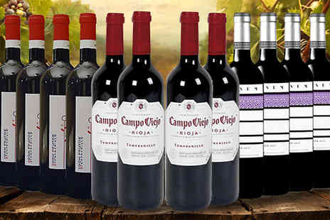 SanJamon - 12 Bottles of Dark Cherry Red Wine Collection - Save 58%